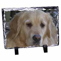 Golden Retriever Dog Photo Slate Christmas Gift Idea