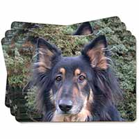 Tri-Colour German Shepherd Picture Placemats in Gift Box