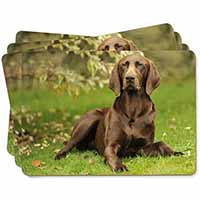 German Pointer Dog Picture Placemats in Gift Box