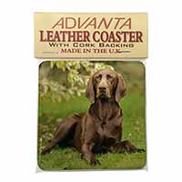 German Pointer Dog Single Leather Photo Coaster Perfect Gift