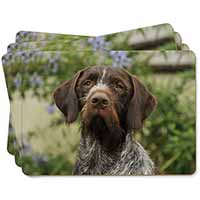 German Wirehaired Pointer Picture Placemats in Gift Box