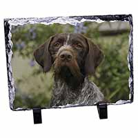 German Wirehaired Pointer Photo Slate Christmas Gift Idea