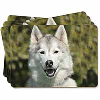 Siberian Husky Dog Picture Placemats in Gift Box