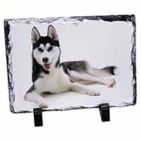 Siberian Husky Dog Photo Slate Christmas Gift Idea