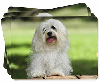 Havanese Dog Picture Placemats in Gift Box