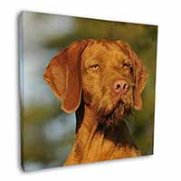 "Hungarian Vizsla Wirehaired Dog 12""x12"" Wall Art Canvas Picture"
