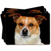 Jack Russell Terrier Dog Picture Placemats in Gift Box