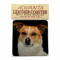 Jack Russell Terrier Dog Single Leather Photo Coaster Perfect Gift