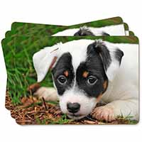 Jack Russell Puppy Dog Picture Placemats in Gift Box