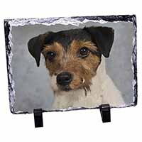 Jack Russell Terrier Dog Photo Slate Photo Ornament Gift