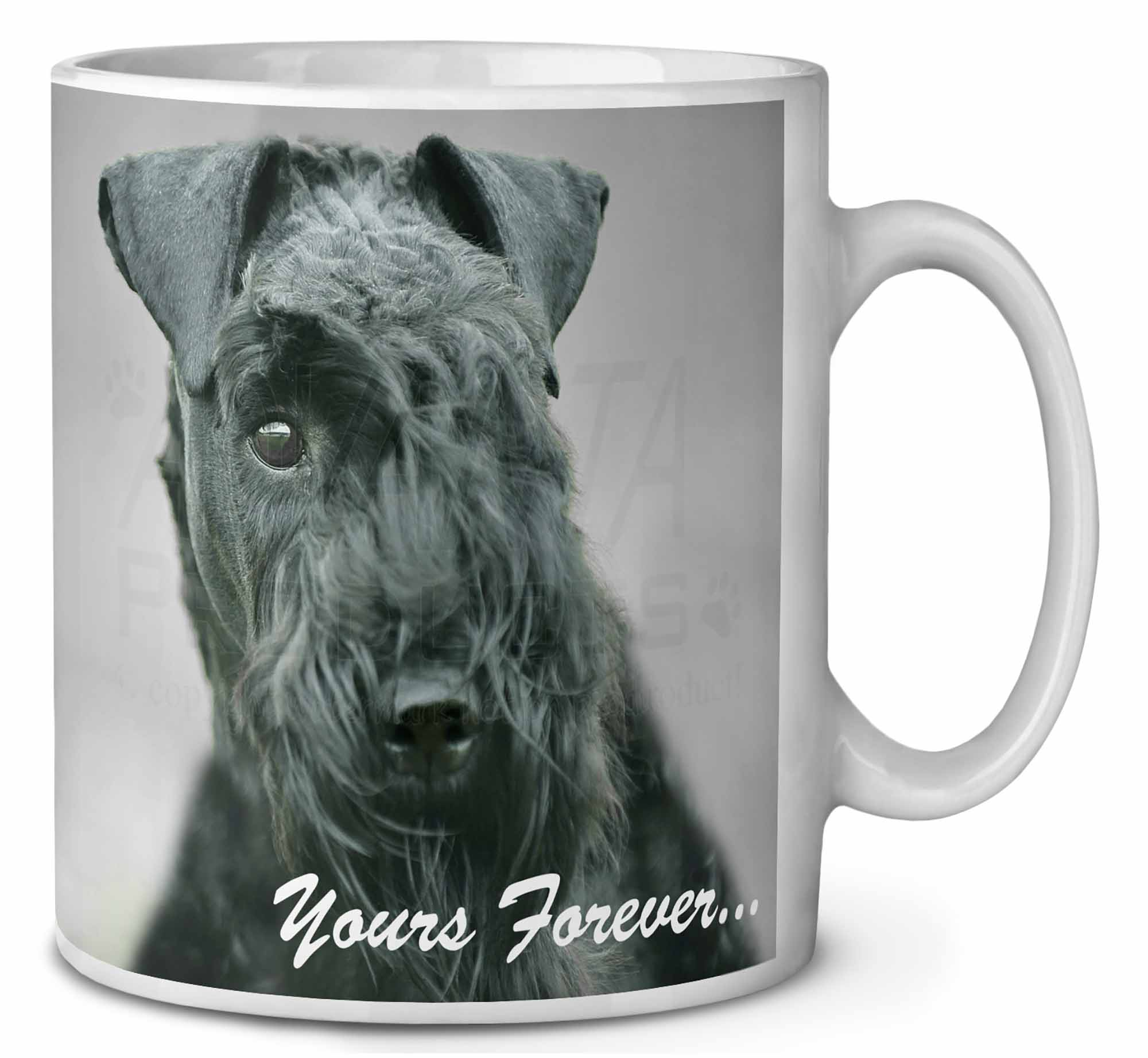 Kerry Blue Terrier 'Yours Forever' Coffee Mug Christmas Stocking , ADKB1yMG