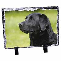 Black Labrador Dog Photo Slate Christmas Gift Idea