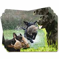 Retrieving Labrador Montage Picture Placemats in Gift Box