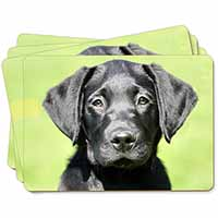 Black Labrador Puppy Picture Placemats in Gift Box
