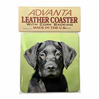 Black Labrador Puppy Single Leather Photo Coaster Perfect Gift