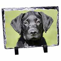 Black Labrador Puppy Photo Slate Christmas Gift Idea