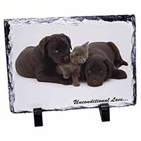 Black Labrador and Cat Photo Slate Christmas Gift Ornament