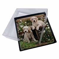 4x Yellow Labrador Puppies Picture Table Coasters Set in Gift Box