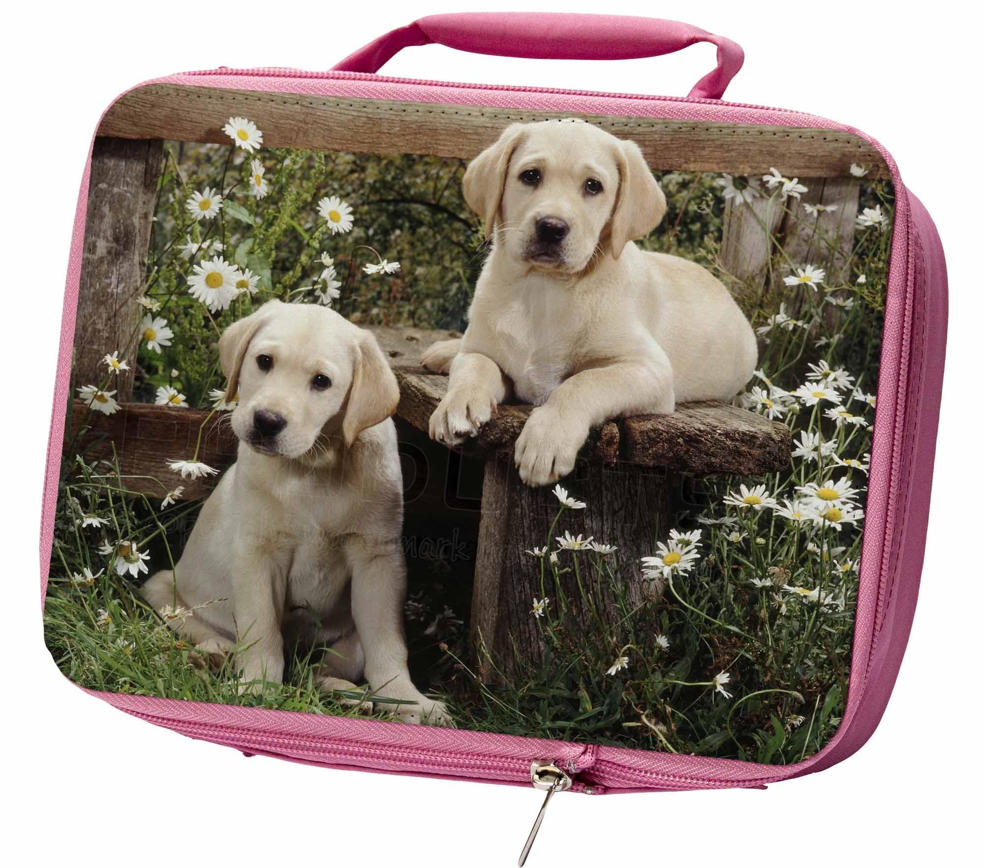 Labrador Giallo Cuccioli Ermetica Rosa Porta Pranzo, Ad-l50lbp Giallo-  - ebay.it