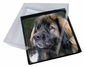 4x Black Leonberger Dog Picture Table Coasters Set in Gift Box