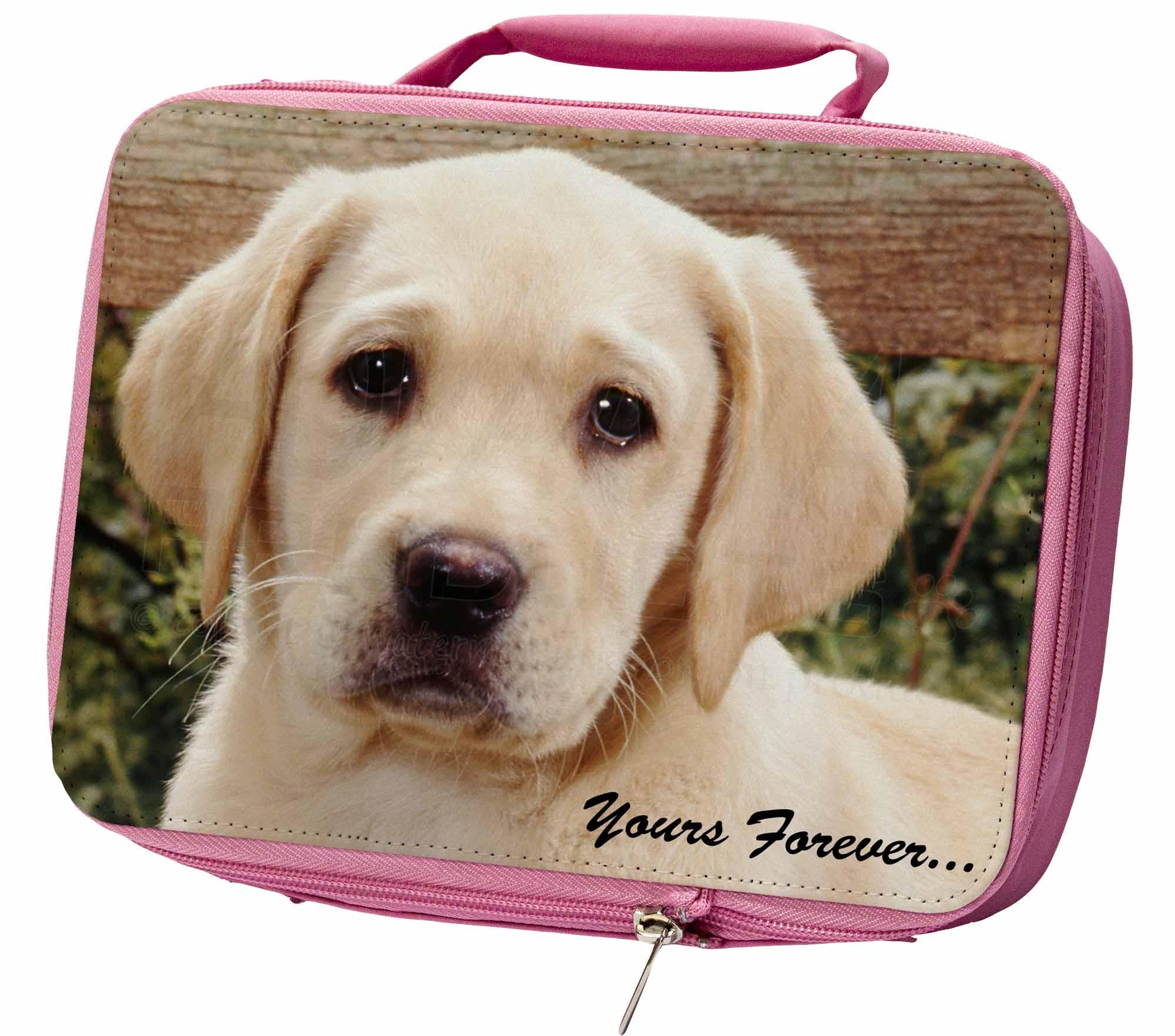 Gelber-Labrador-Welpe-034-dir-fuer-immer-034-Isoliert-Pink-Lunchbox-AD-L71yLBP
