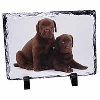 Chocolate Labrador Puppy Dogs Photo Slate Christmas Gift Idea