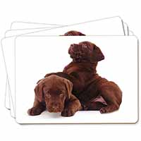 Chocolate Labrador Puppies Picture Placemats in Gift Box