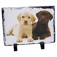 Labrador Puppy Dogs Photo Slate Christmas Gift Idea