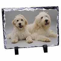 Labradoodle Dog Photo Slate Photo Ornament Gift