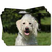 White Labradoodle Dog Picture Placemats in Gift Box