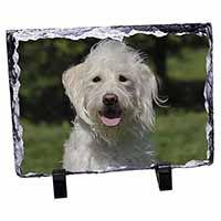 White Labradoodle Dog Photo Slate Photo Ornament Gift