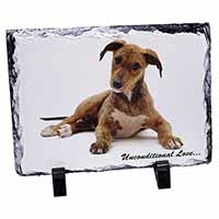 Lurcher Dog-With Love Photo Slate Christmas Gift Idea