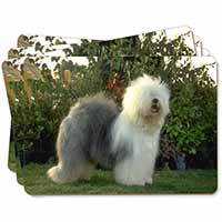 Old English Sheepdog Picture Placemats in Gift Box