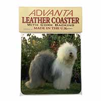 Old English Sheepdog Single Leather Photo Coaster Animal Breed Gift