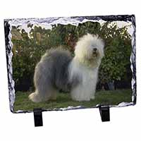 Old English Sheepdog Photo Slate Christmas Gift Ornament
