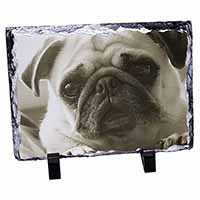 Cute Pug Dog Photo Slate Photo Ornament Gift