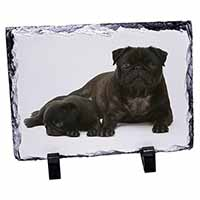 Pug Dog and Puppy Photo Slate Christmas Gift Ornament