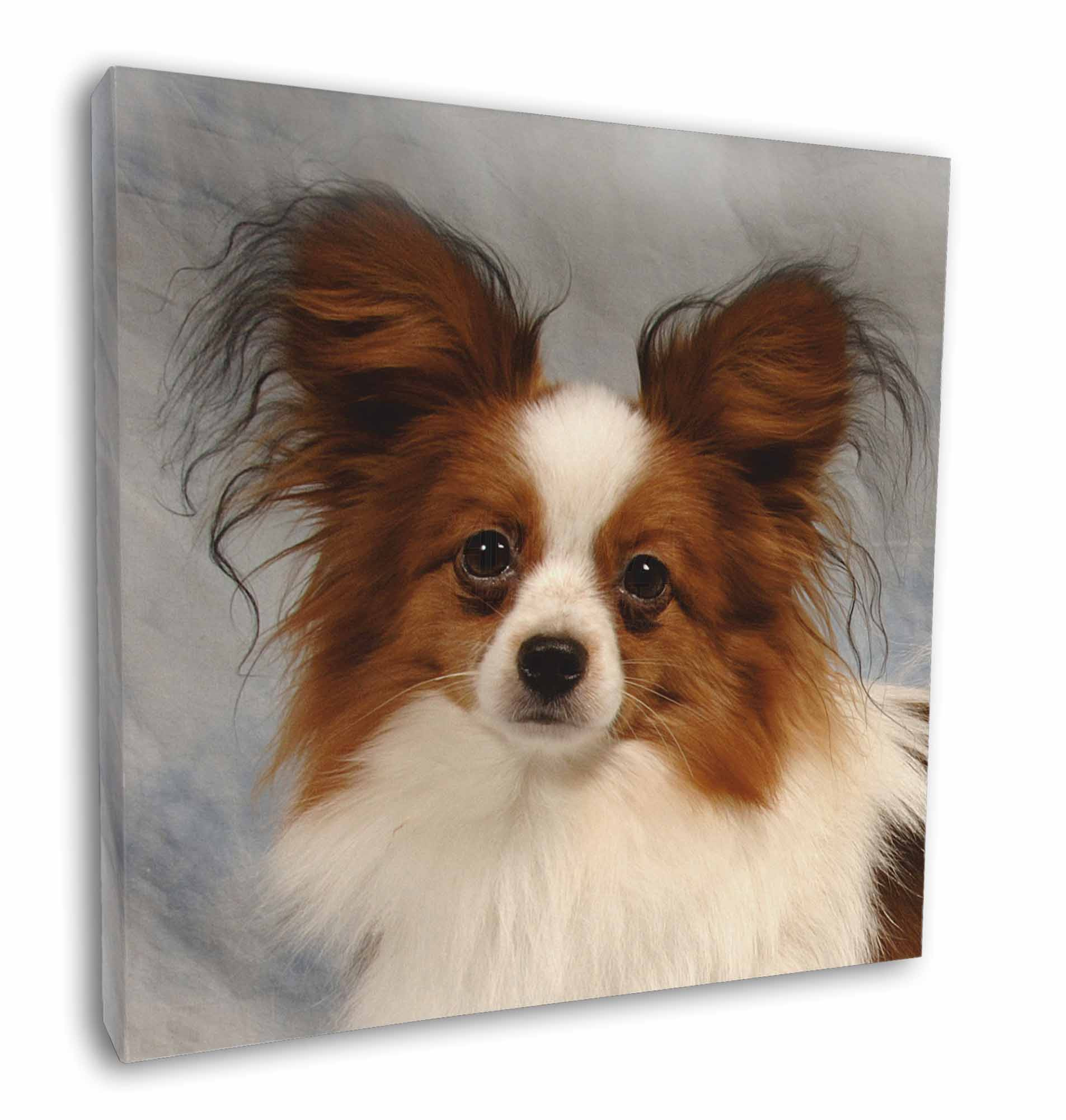Your Papillon Dog/'s Photo on a Business Card Holder