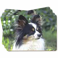 Papillon Dog Picture Placemats in Gift Box