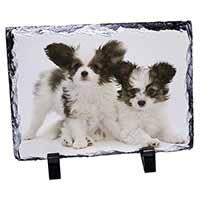 Papillon Dogs Photo Slate Christmas Gift Idea
