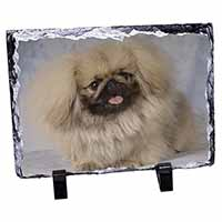 Pekingese Dog Photo Slate Christmas Gift Idea