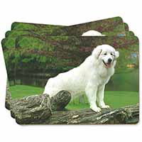 Pyrenean Mountain Dog Picture Placemats in Gift Box