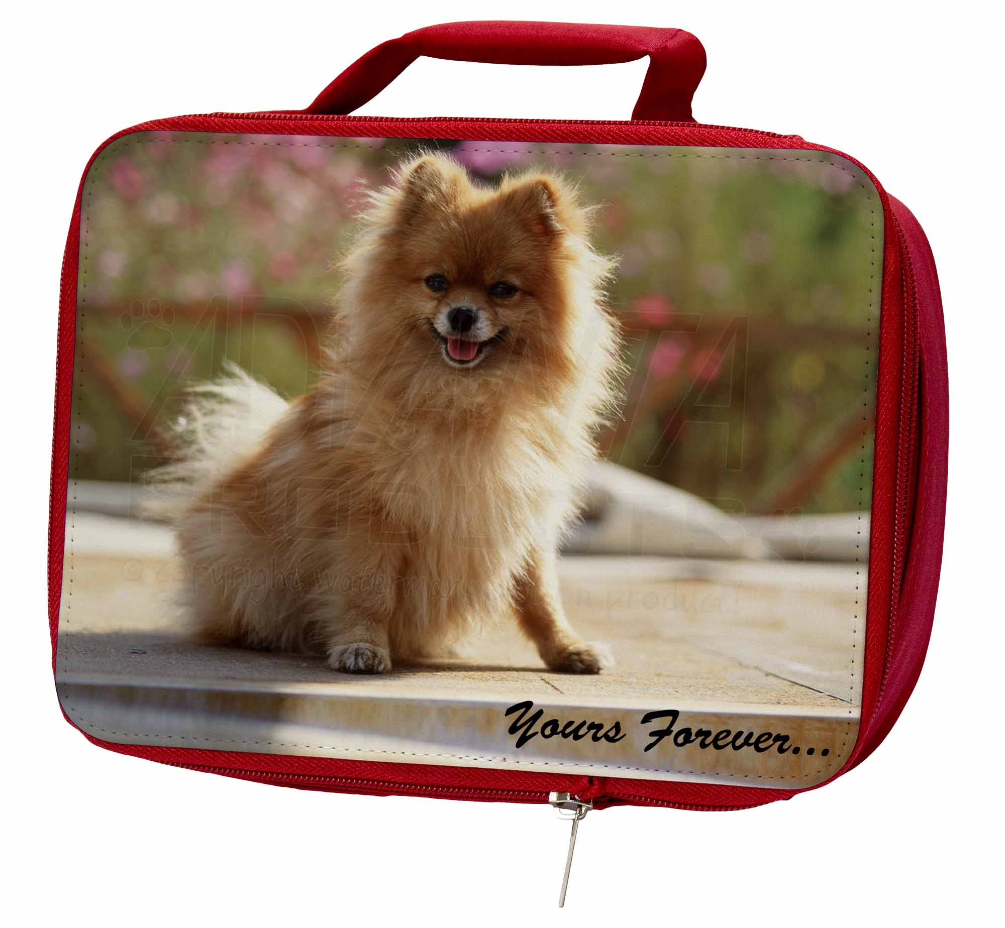 Pomeranian Dog AD-PO89yLBR 'Yours Forever' Insulated Red School Lunch Box/Picni, AD-PO89yLBR Dog 9ab8af