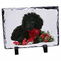 Christmas Poodle Photo Slate Photo Ornament Gift