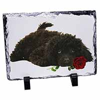 Miniature Poodle Dog with Red Rose Photo Slate Christmas Gift Idea