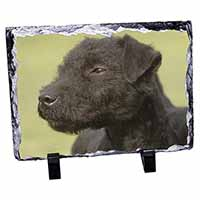 Patterdale Terrier Dogs Photo Slate Photo Ornament Gift