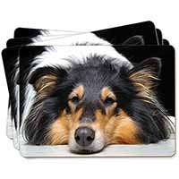 Tri-Colour Rough Collie Dog Picture Placemats in Gift Box