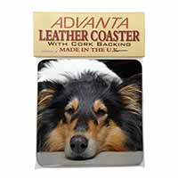 Tri-Colour Rough Collie Dog Single Leather Photo Coaster Perfect Gift