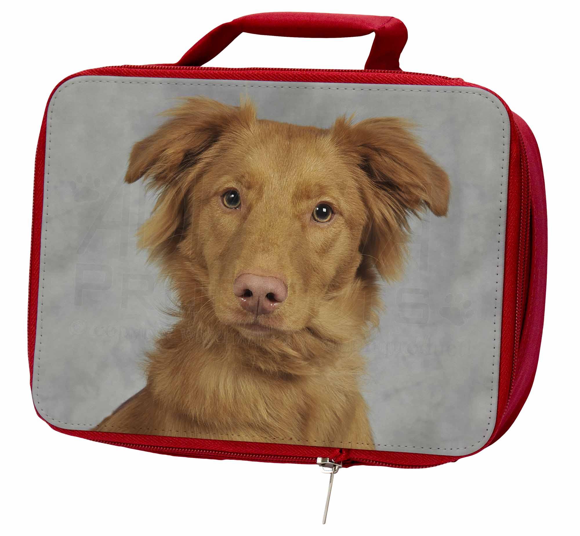 Nova Box/Picnic Scotia Duck Retriever Insulated Red School Lunch Box/Picnic Nova Bag, AD-RN2LBR 23ae3e