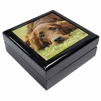 Irish Red Setter Puppy Dog Keepsake/Jewel Box Birthday Gift Idea